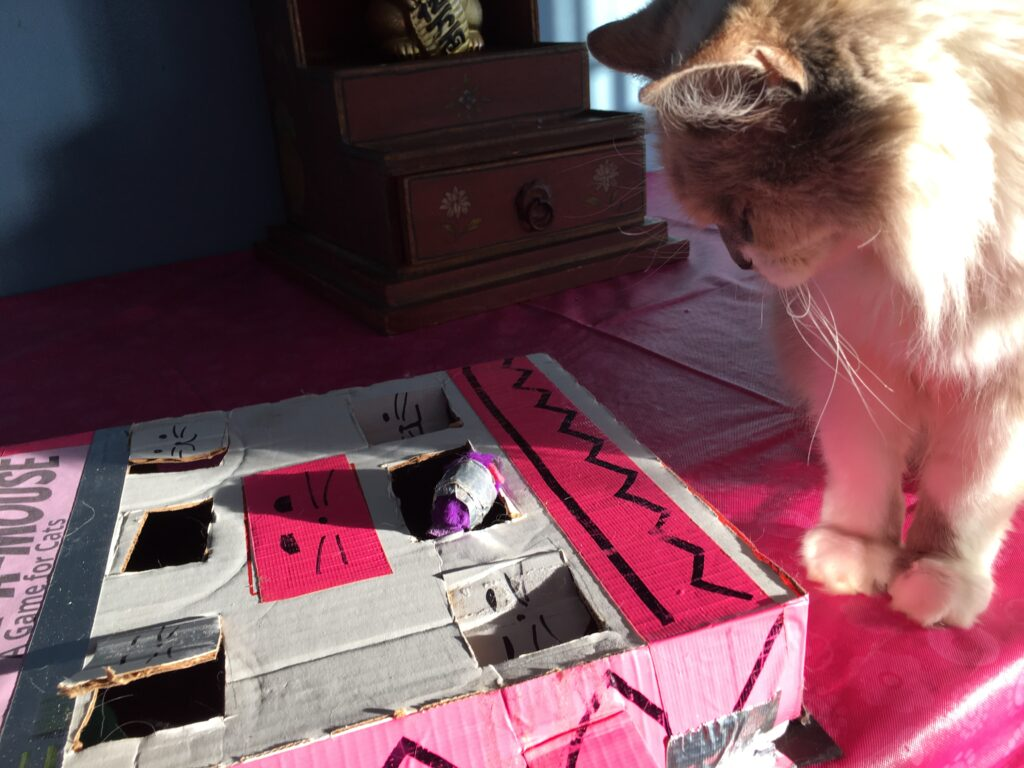 Fairy Princess with Whack A mouse DIY Cat Game