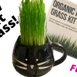 cat grass kit by the Cat Ladies