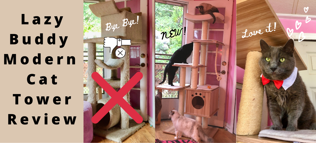Lazy Buddy Modern Cat Tower Review