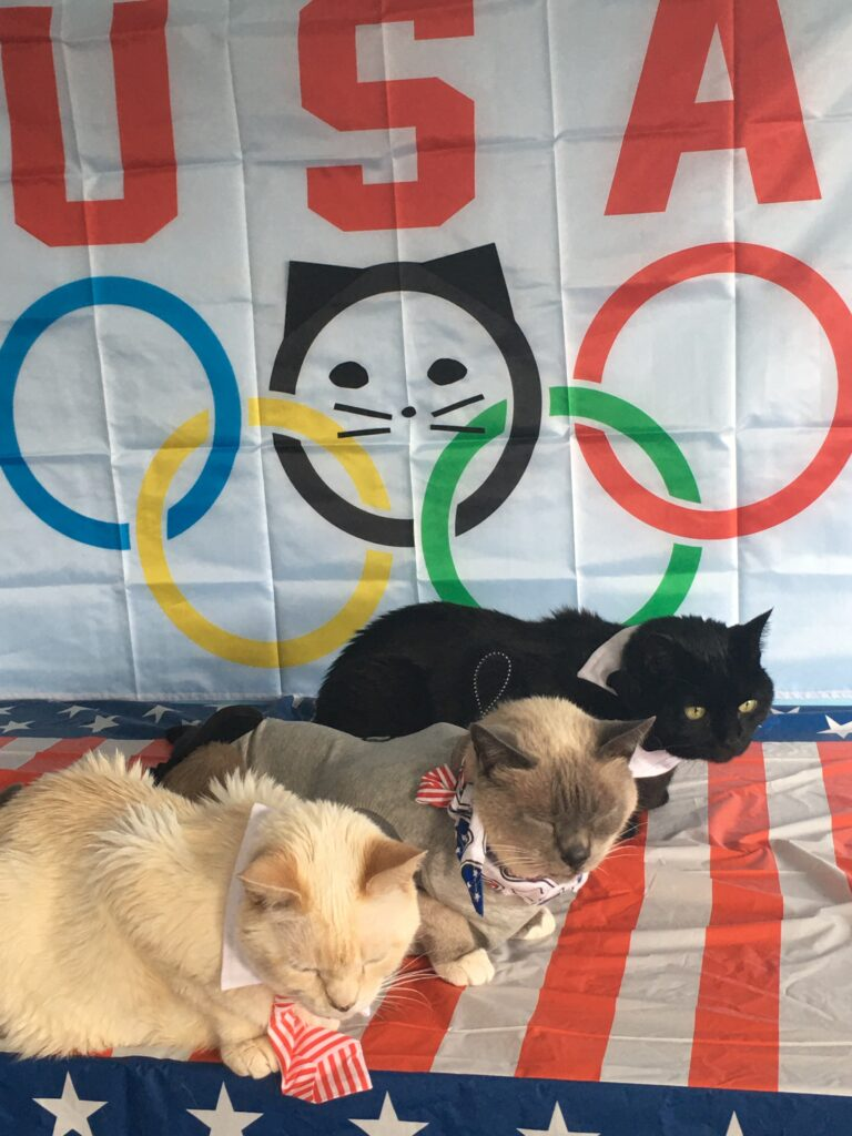Cat Olympic Judges from Furball fables